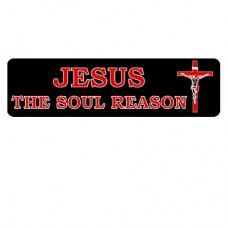 Christian Sticker-JESUS THE SOUL REASON #1095