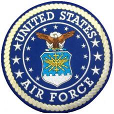 U.S. Air Force Lg patch